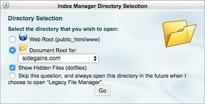 cPanel File Manager Options